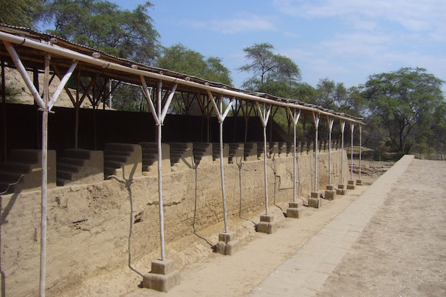 Pomac Dry Forest - Typical Huaca Design.jpeg