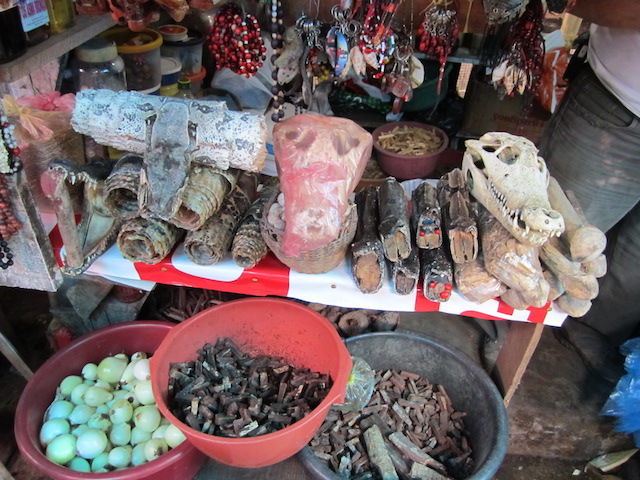 Iquitos, Loreto - Belen Market - Caiman Skulls.JPG
