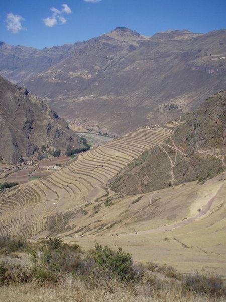 Low Altitude Machu Picchu - Inca Terracing.JPG