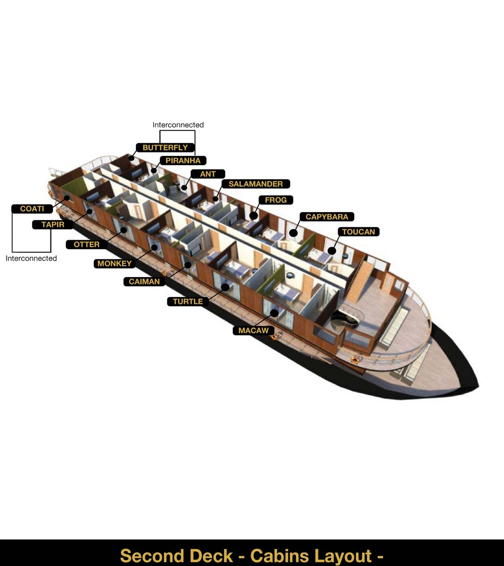 Anakonda Amazon Cruise - Deck 2 - 3D Plan