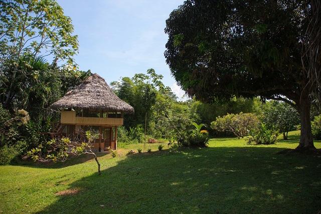 Pacaya Samiria Amazon Lodge
