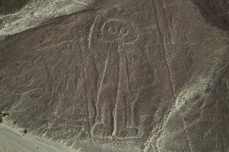 Paracas & Nazca LInes 3D - Owl Man