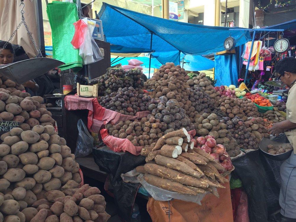 Dallas, Elana x 2 - Arequipa & Colca - Potatoes at Market.jpg