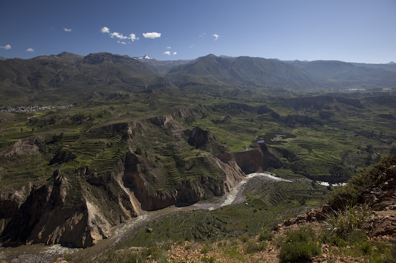 Colca River flowing through the canyon.