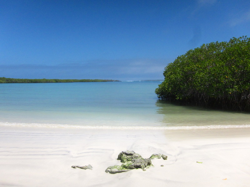 Galapagos Islands 5D - Deserted Beach.jpg