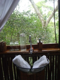 Morgan x 2 - Treehouse Lodge, Iquitos3.jpeg