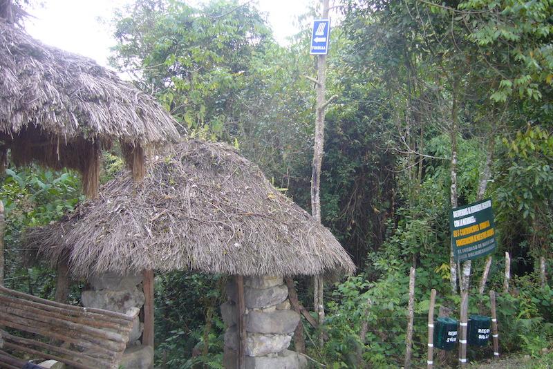 Hike to Yumbilla Waterfall, Cuispes1.JPG