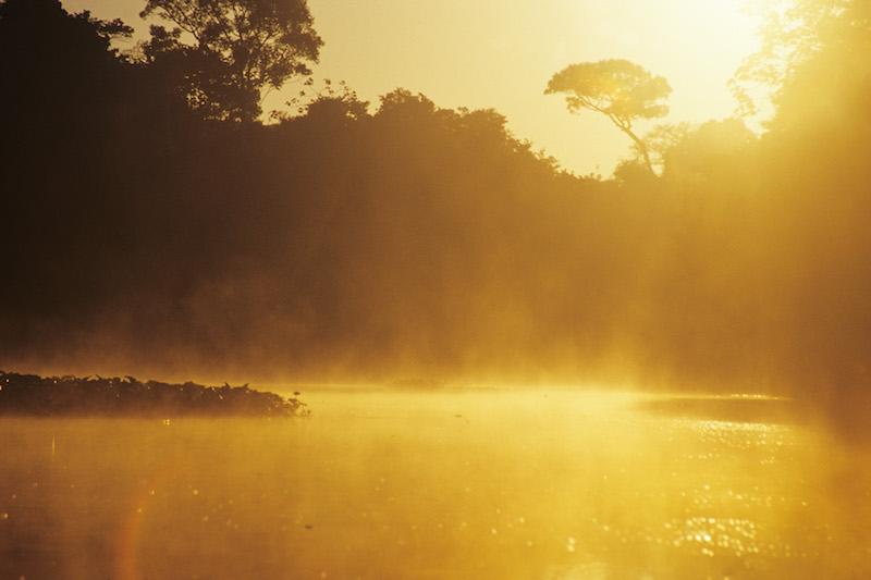 Tarapoto - Trujillo 9D - Amazon Morning Mist.jpg