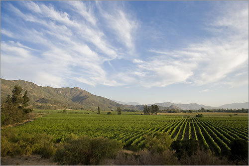 The valleys around Santiago are known for their vineyards.