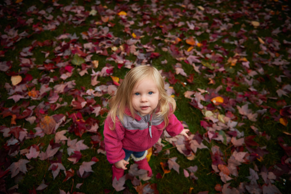 seattle-children-photography.jpg