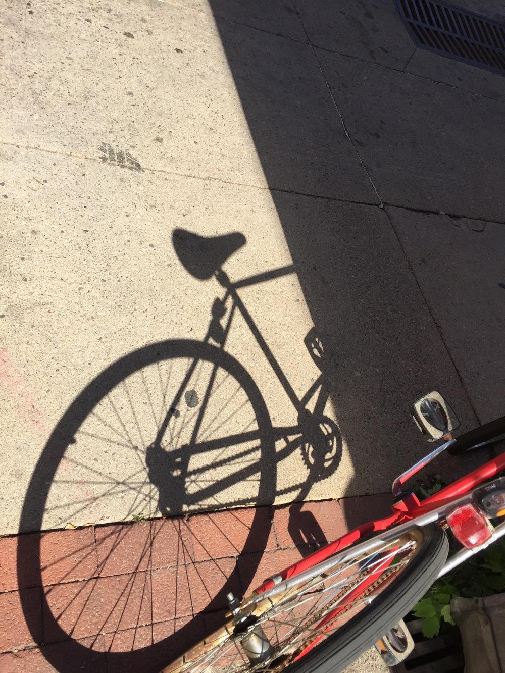 Boulder_bike 2.jpg