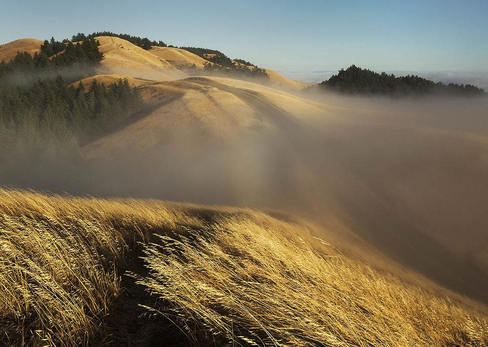 Mount Tamalpais state park,, California, Mount Tam