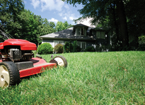 Spring Lawn Care Tips — Anoka County Master Gardeners