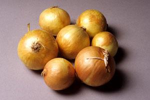 onion-2.jpg