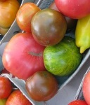 heirloom tomatoes TN.jpg