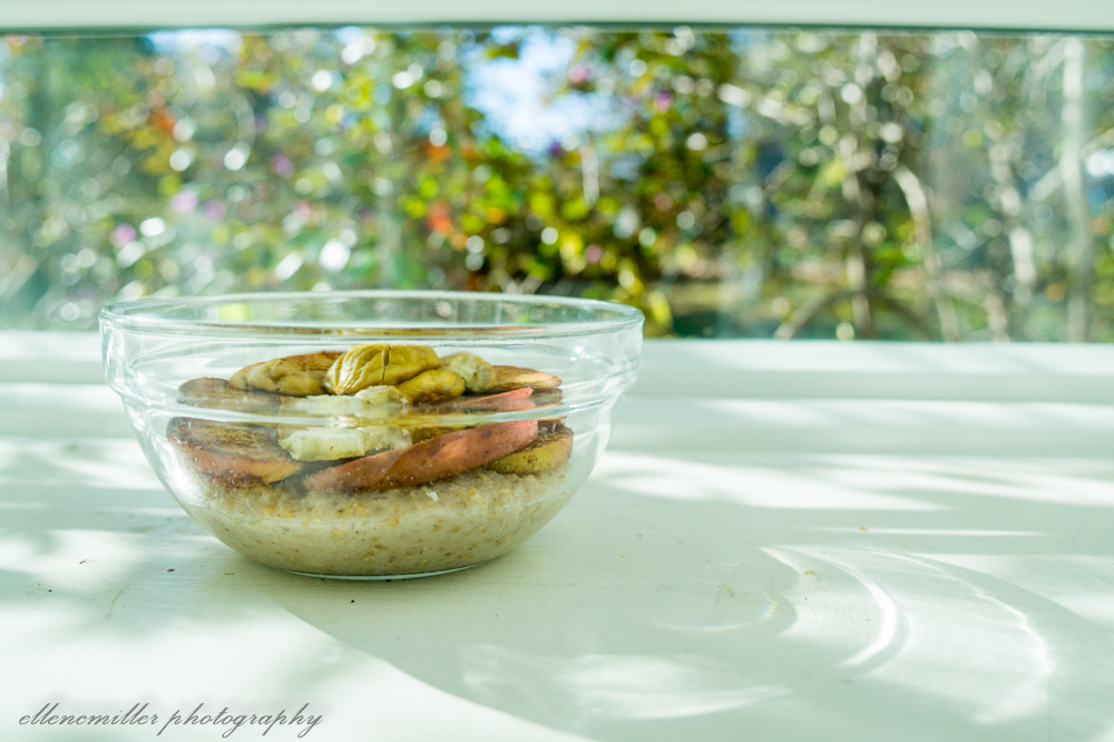 Chestnut & Apple Oats