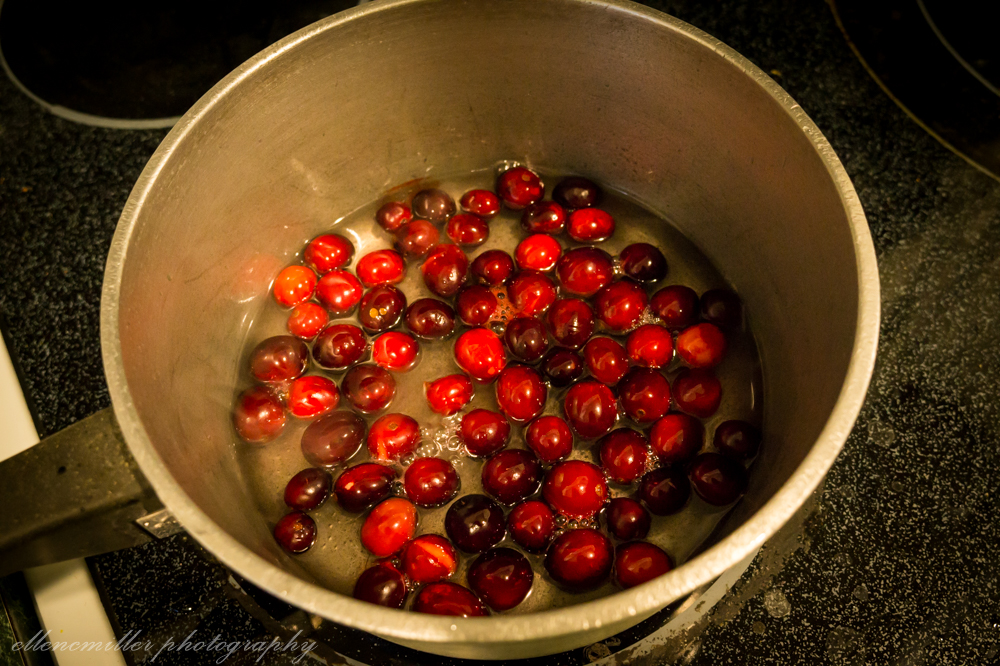 Cranberry Oats-3.jpg