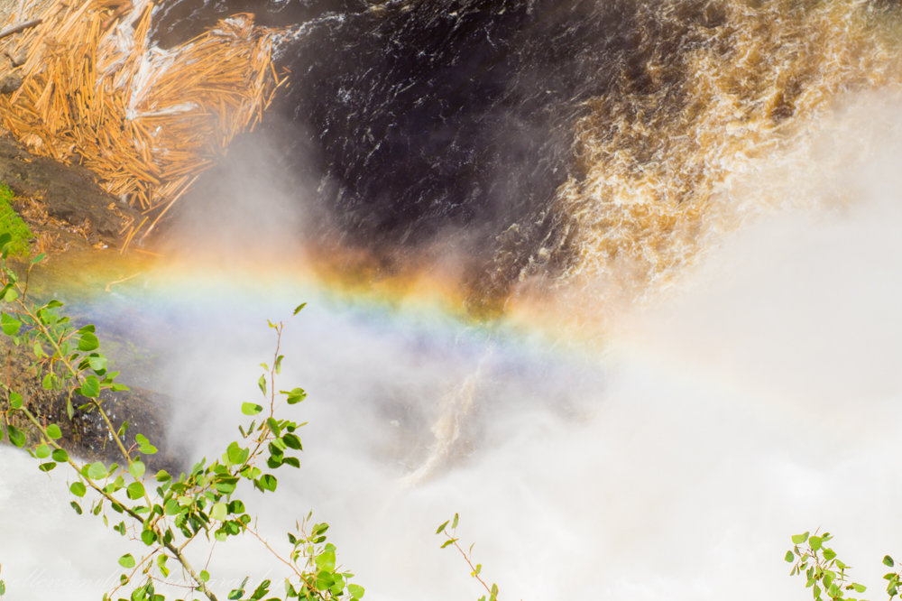 The Falls-16.jpg