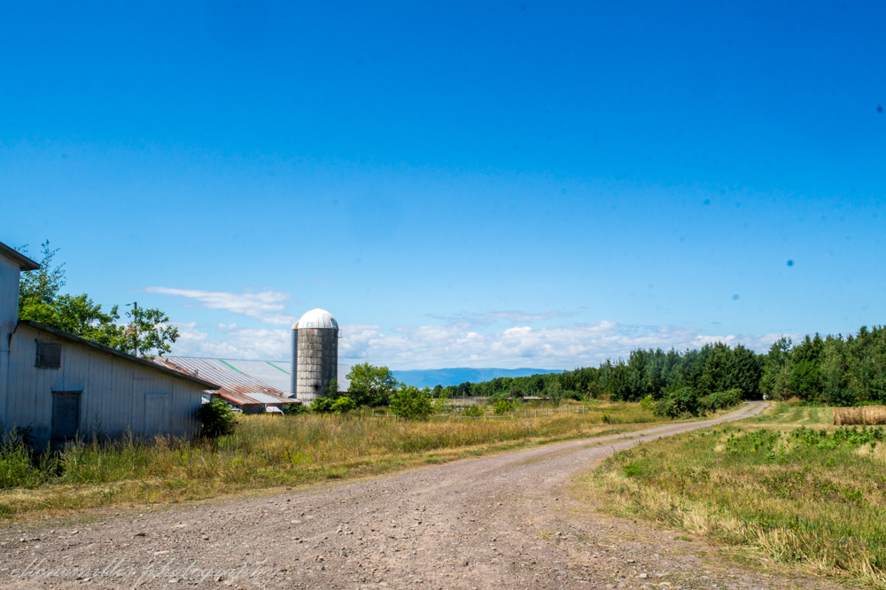 Farmlands surrounding Saint Aubert, QC