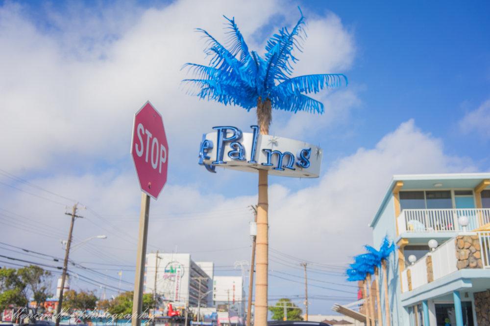 Jersey Shore 2018-42.jpg