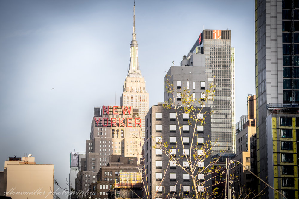 NYC-050118-16.jpg