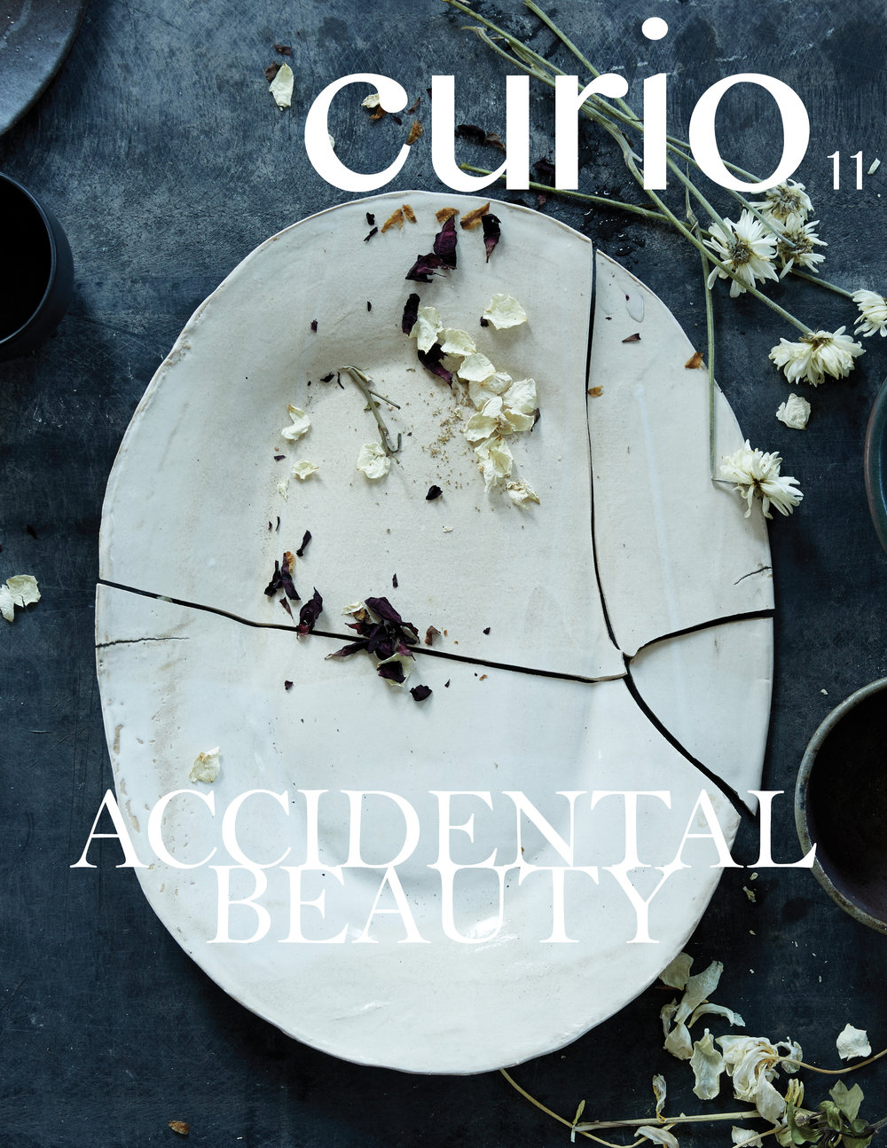 ISSUE 11: ACCIDENTAL BEAUTY