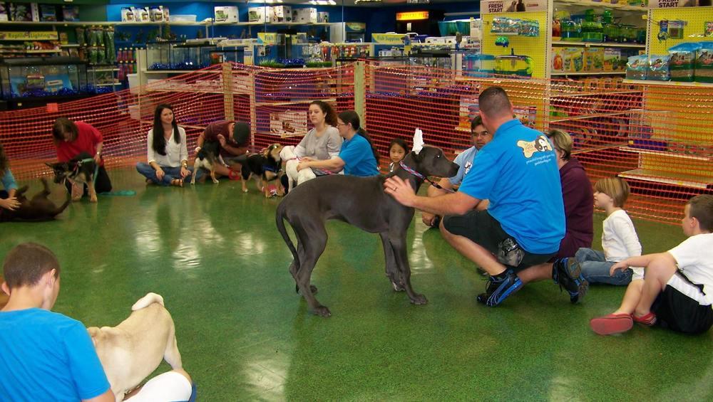 Puppy K -1-17-15.jpg