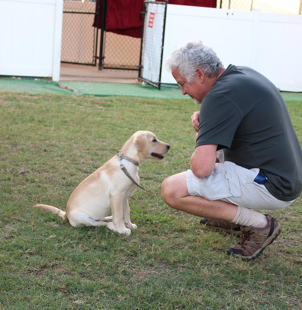 Puppy K 4-7-15#5.jpg