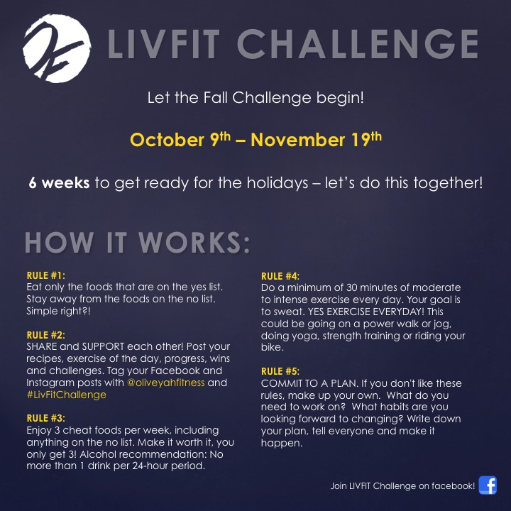 LIVFIT Challenge_Fall2017_Overview.jpg