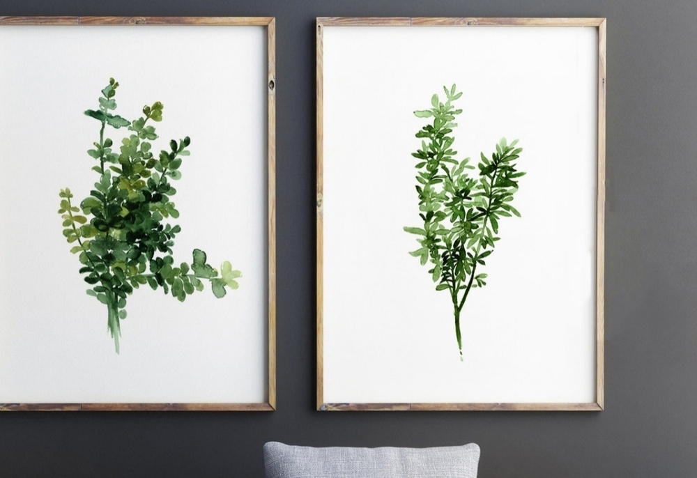 Thyme Watercolor Paintings, starting @ $25