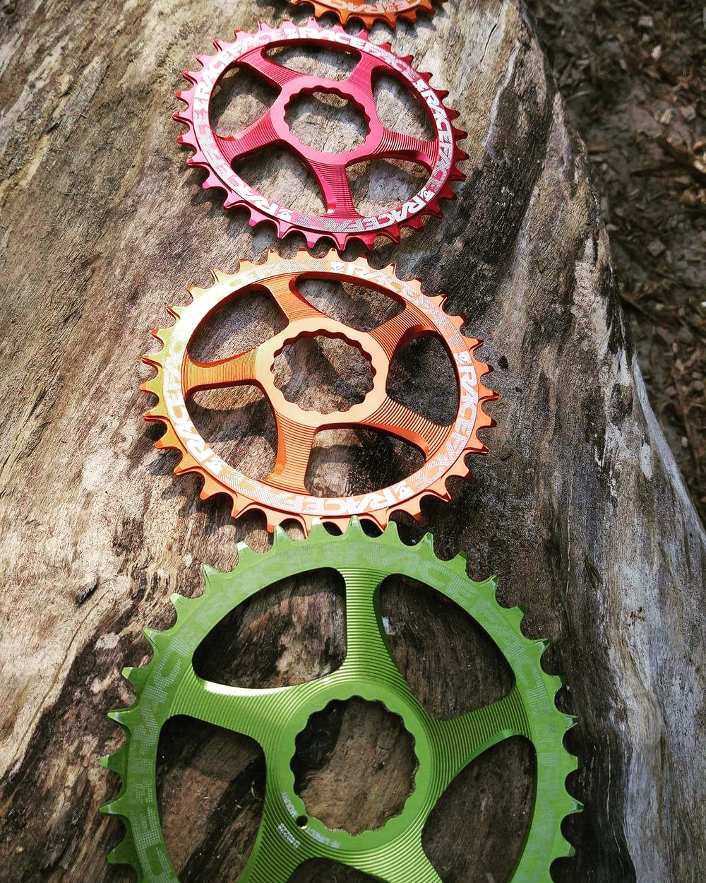 RACEFACE  DM NW chainrings