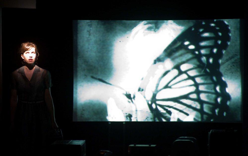secret war butterfly pb.jpg