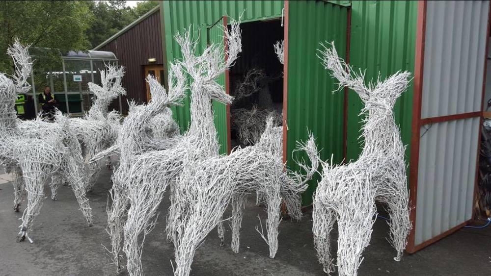 centerparcs willow reindeer.jpg