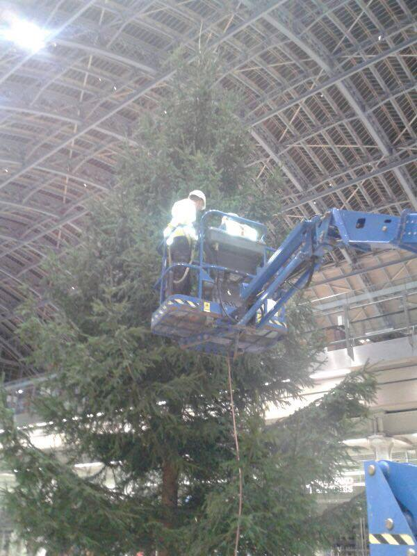 40ft Christmas Tree at St Pancras International Station flame proofed 4.jpg