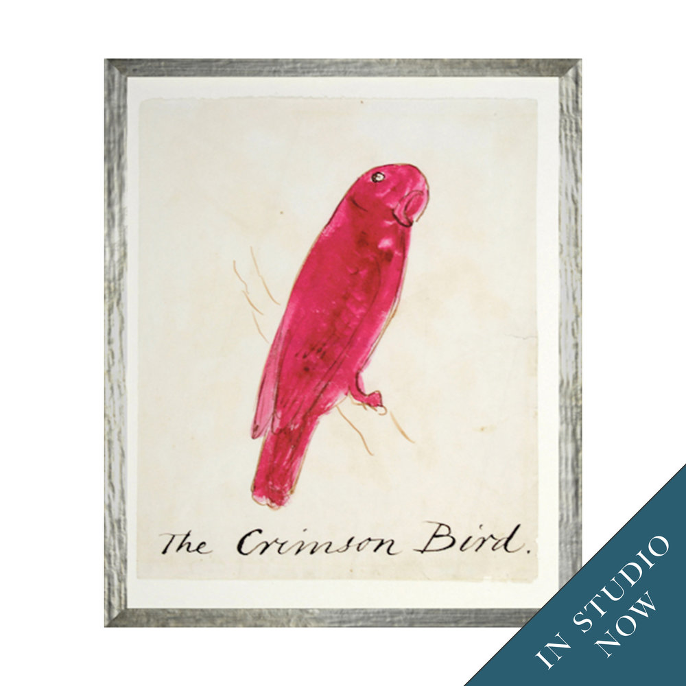 From purveyors in Canada, this series of whimsical bird prints makes a class motif playful and modern.