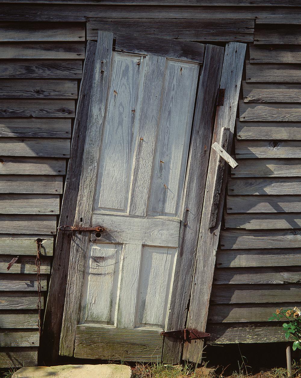 Mossie's Door