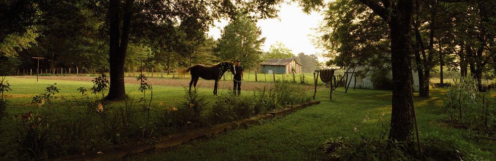 Ricky's Horse.jpg