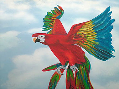 Macaw Mural