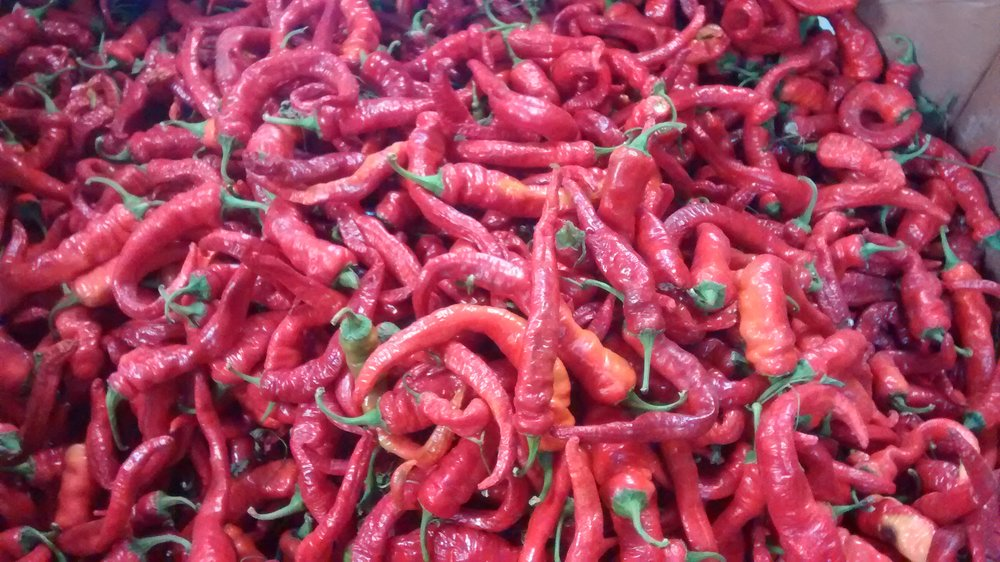 Raw hot portugal peppers ready for processing