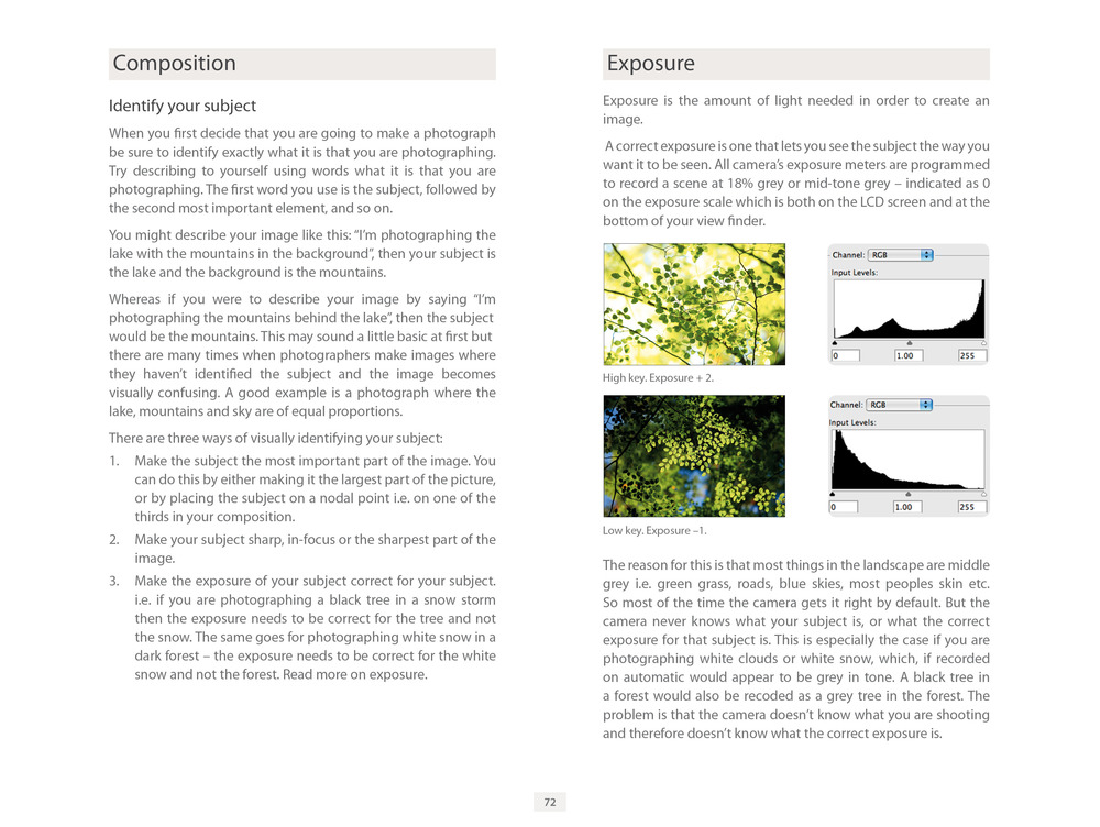 LG1 ebook for Flatbooks page 72 Composition & Exposure.jpg