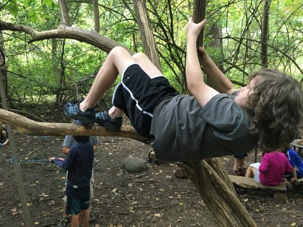 Climbing & Hanging -