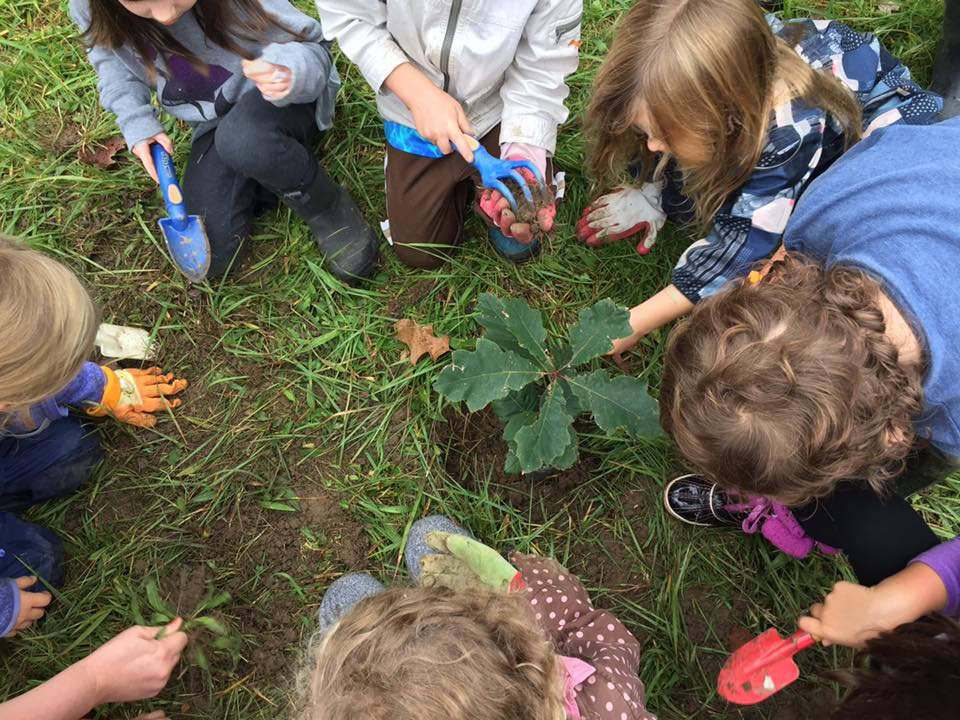 Red Oak Community School - Education Through Nature Immersion