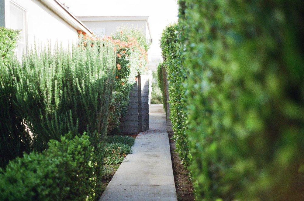 garden-way.jpg