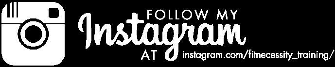 FitNecessity-Instagram-logo.png