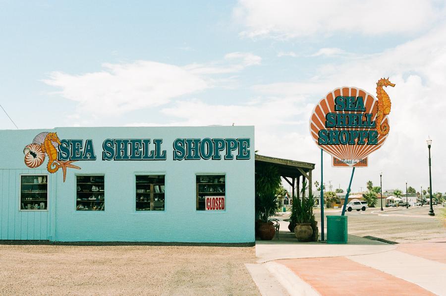 20/365 - She Sells Sea Shells  50mm, f/11, 1/100 sec, expired Kodak Portra 160