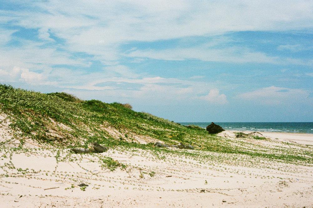 62/365 - Sand Dunes