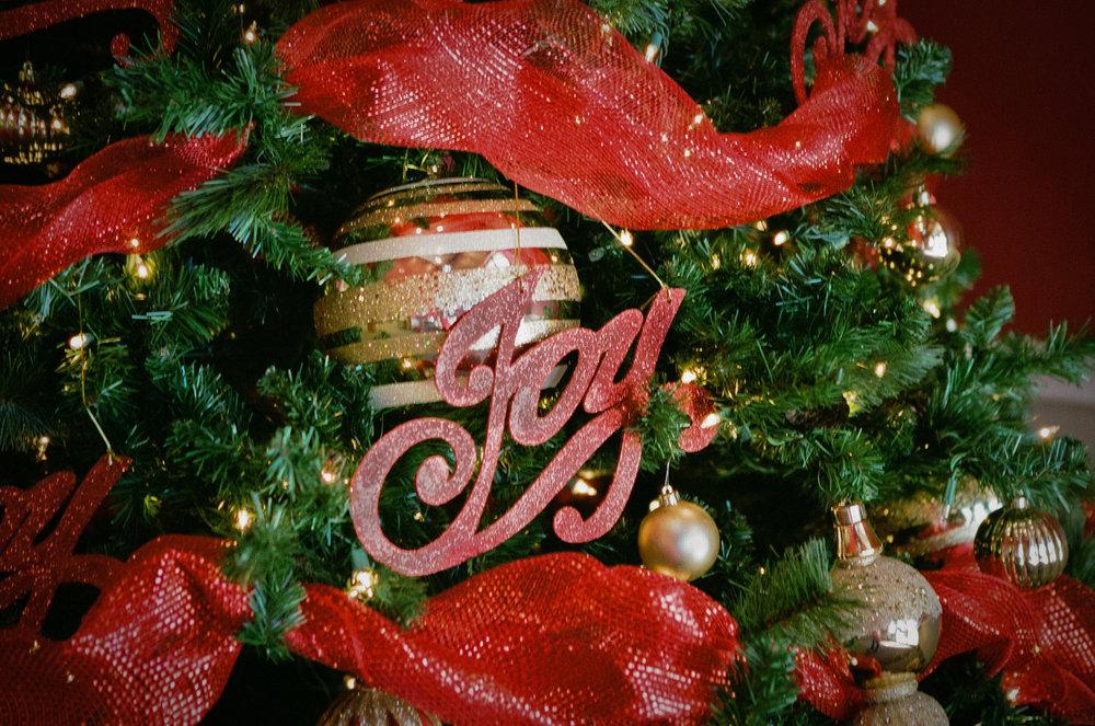 94/365 - Christmas Joy 70mm, f/2.8, 1/120th sec, Fuji 400H