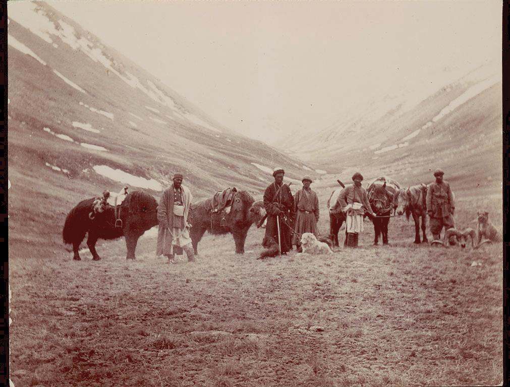 Kirghiz Hunters