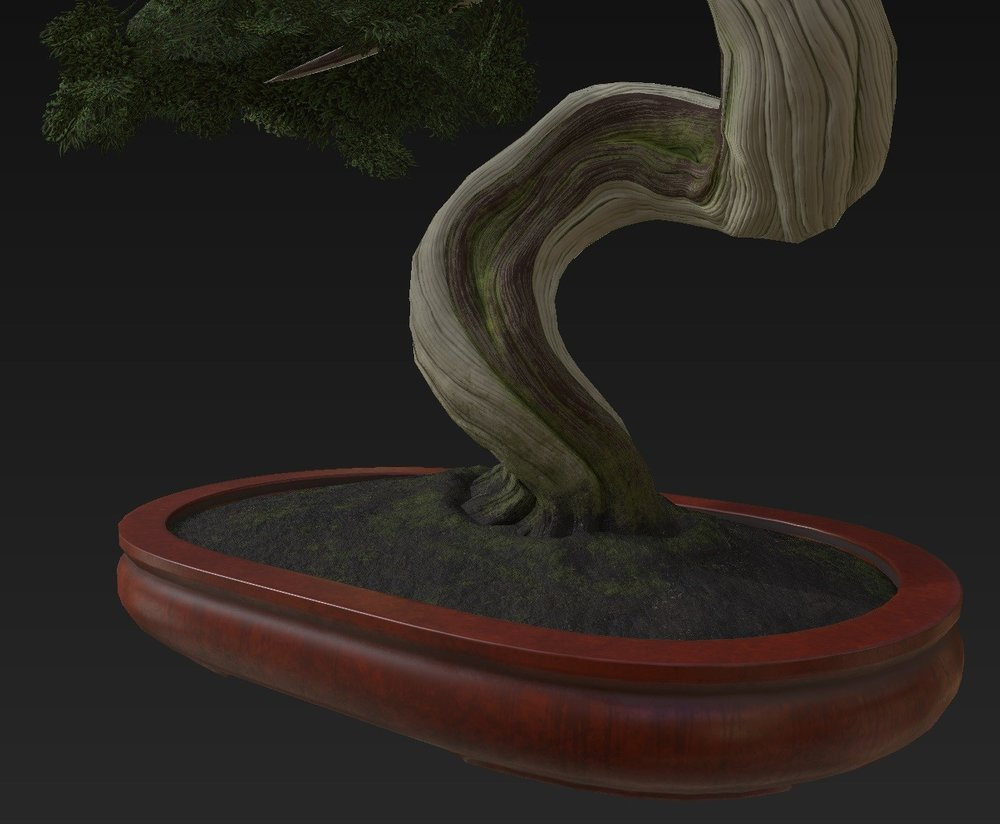 Bonsai_Tree_12.jpg