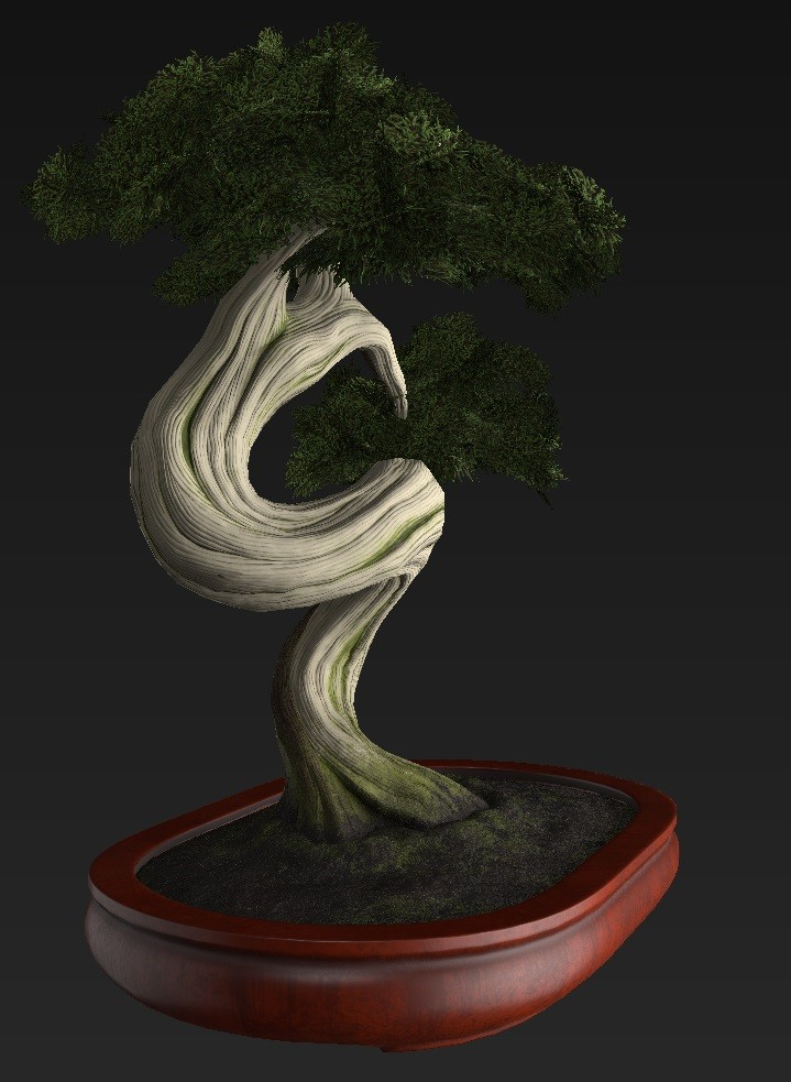 Bonsai_Tree_28.jpg